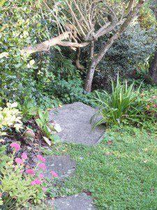 Down the Garden Path - Boscastle