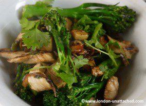 Tenderstem Broccoli and Chicken StirFry