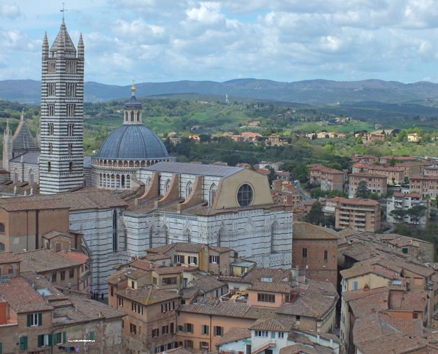 1 siena cathedral from tower