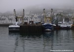 The English Riviera – Home to Brixham Fish Market, Devon