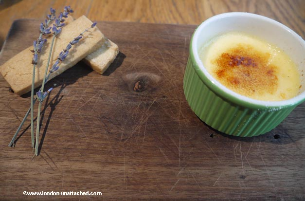 the anthologist creme brulee
