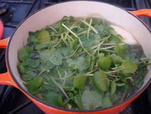5 2 diet celariac and watercress soup
