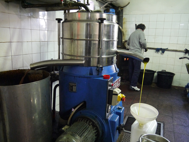 Centrifuge Olive Oil Production in Tuscany