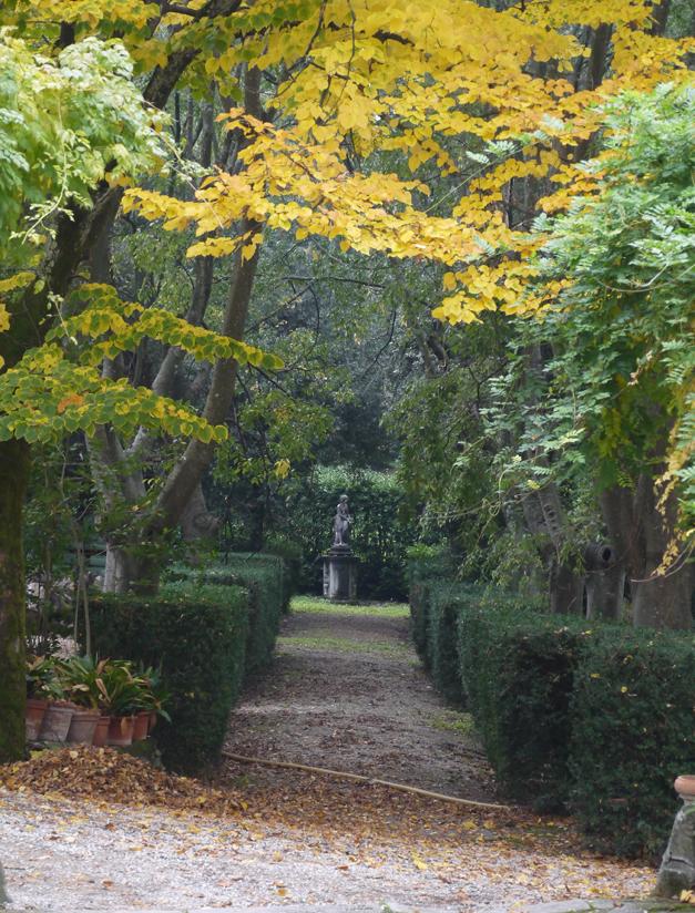 garden capezzana