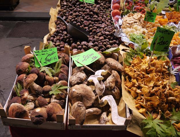 pistoia - fungi