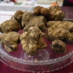 Tales of Tuscany – White Truffle Festival
