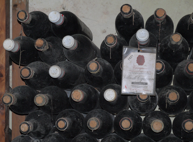 vintage wines at capezzana