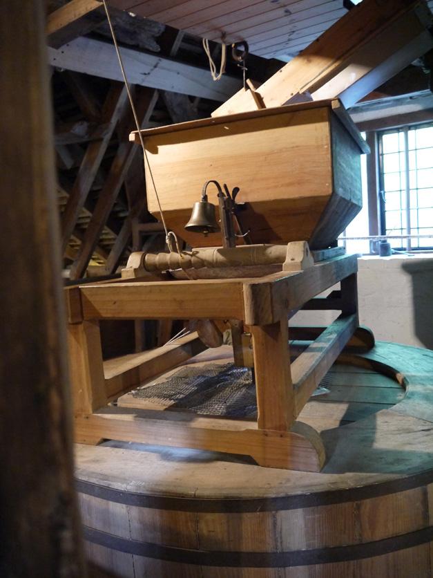 mapledurham mill with bella