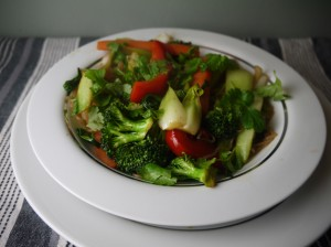 Low Calorie Vegetable and Shirataki Noodle StirFry