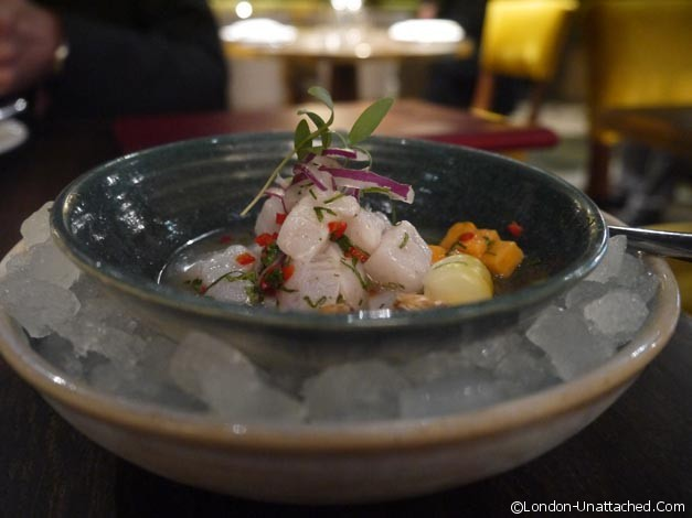 coya ceviche London Mayfair