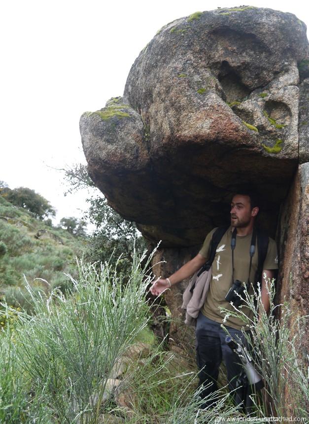 faia brava shepherd's hide