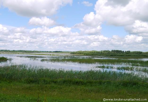 Baranja Wetlands