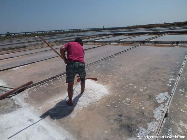 Aveiro - Juan Salt Flats