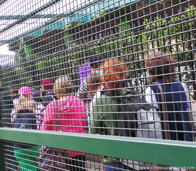 Wimbledon Queue - if you don't have a ticket