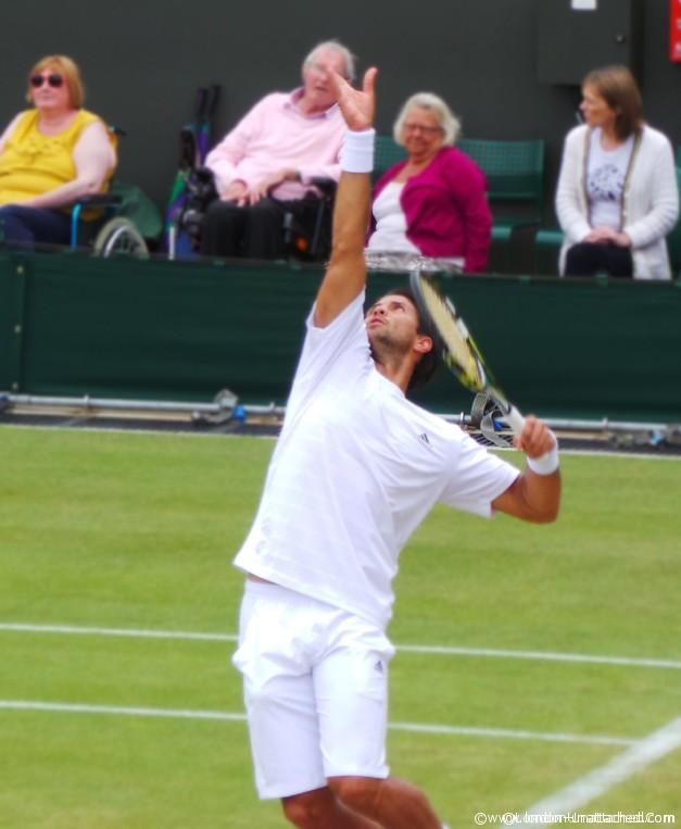 Wimbledon Close-up