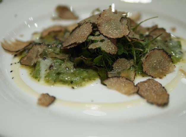 Tartufo - Swiss chard and Summer Truffle Ravioli