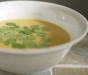 Roasted Butternut Squash Soup for 5:2 Diet