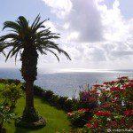 Paradise on my Doorstep – Madeira, Portugal