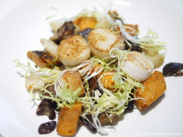 Scallops - Salad Kitchen London