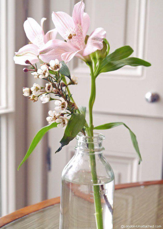 The bingham flower
