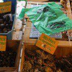 Shellfish - Sarlat