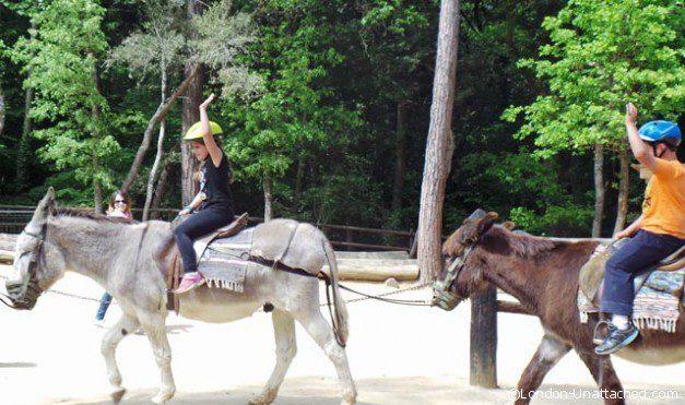 Barcelona Molt Mes - donkeys 2