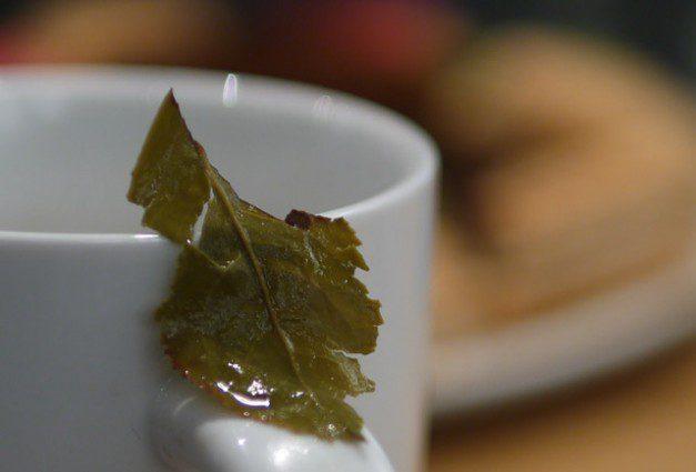 Oolong tea leaf