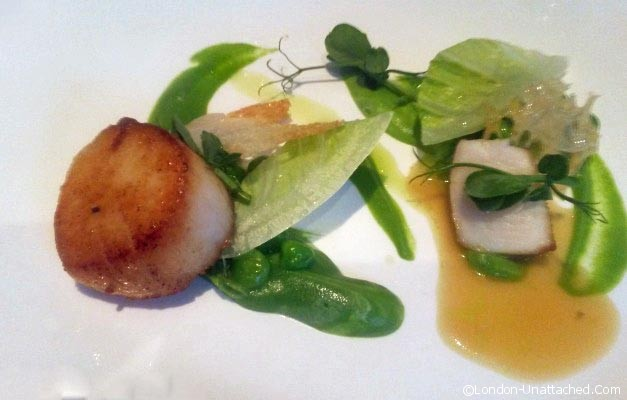 Petrus London - roasted scallops