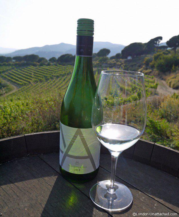 Wine Tasting in the Vineyard_edited-1