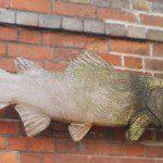 Peat Spade Fish