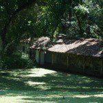 Geoffrey Bawas House - exploring