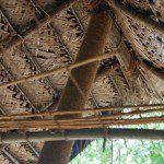 Sri Lanka River Boat Safari - cinnamon drying