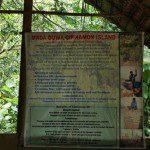 Sri Lanka River Boat Safari - cinnamon island