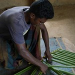 Sri Lanka River Boat Safari - cinnamon production 3