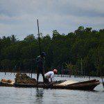 Sri Lanka River Boat Safari - dredgers