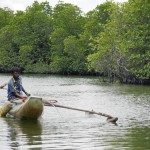 Sri Lanka River Boat Safari - traditional catamaran