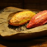 Rabot 1745 – Cacao Culture in Borough