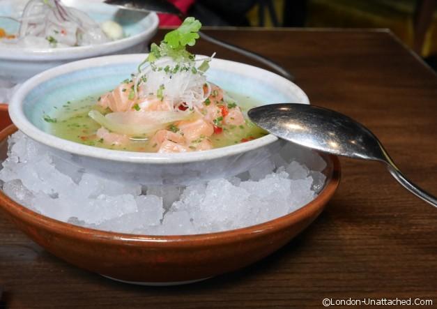 Coya - Salmon Tiradito