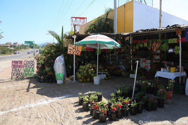 Riviera Nayarit Mexico 200 Street Food