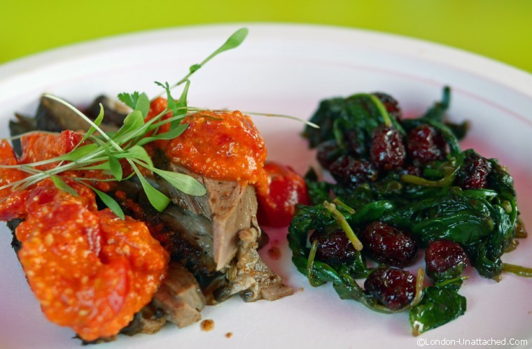lamb and spinach with cranberries