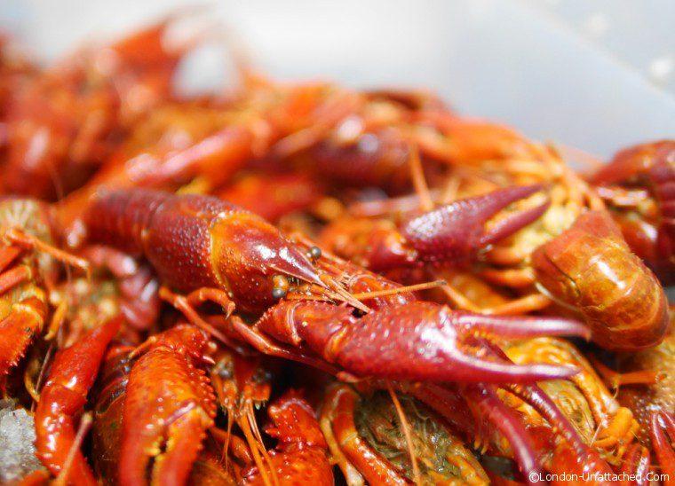 Fika Crayfish
