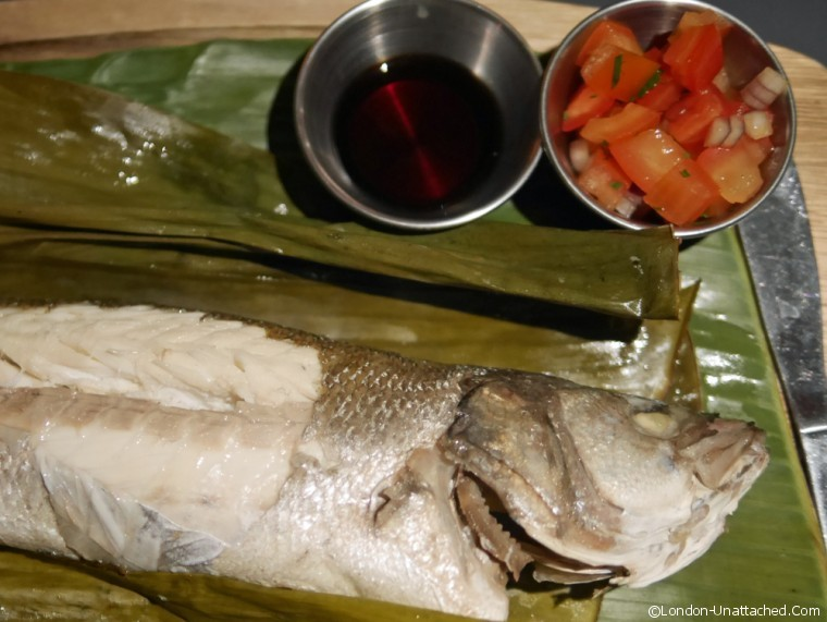 Luzon sea bass