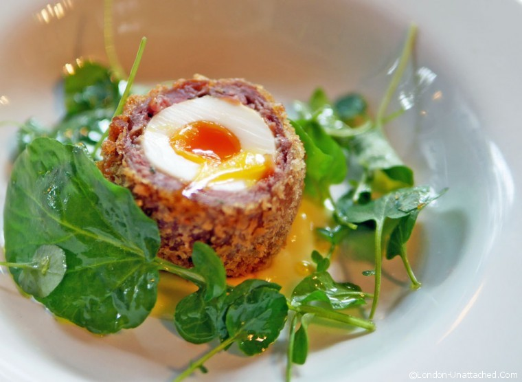 Hixter Scotch Egg