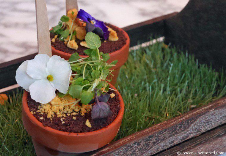 Sanderson Chocolate Flowerpot Passionfruit Ice -