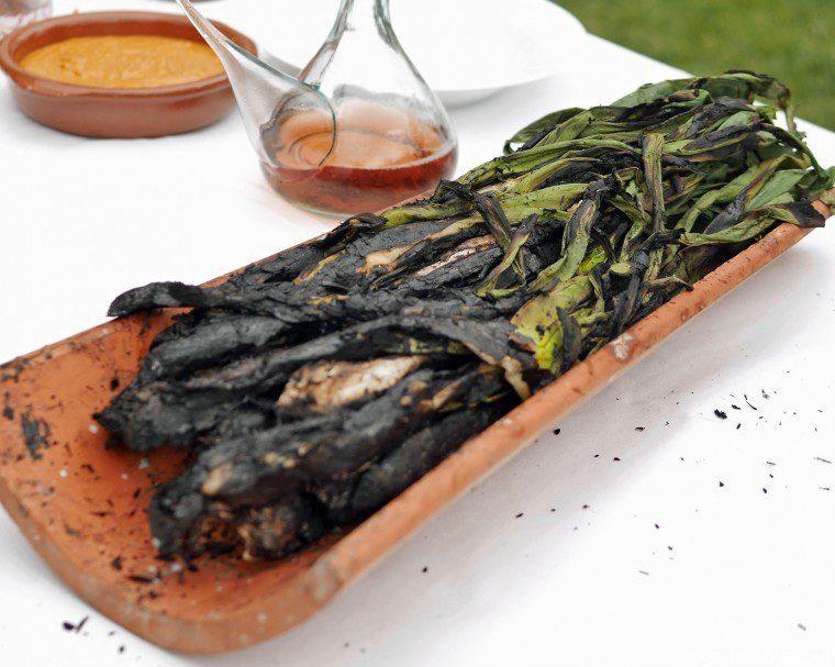vilarnau cava tasting and calcotades - cooked