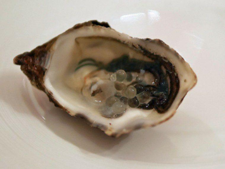 Mumm 'oyster'
