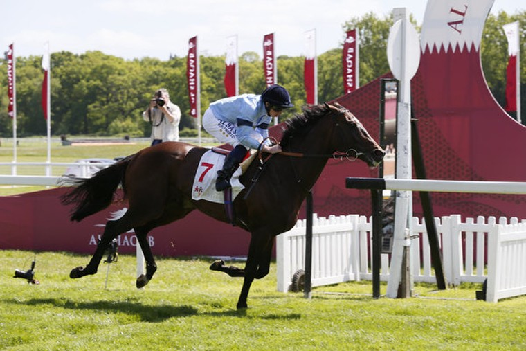 Al Shaqab Lockinge at Newbury
