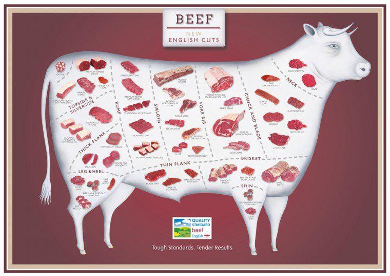 QSM Eng Beef Cuts_A4 Poster v2_HR