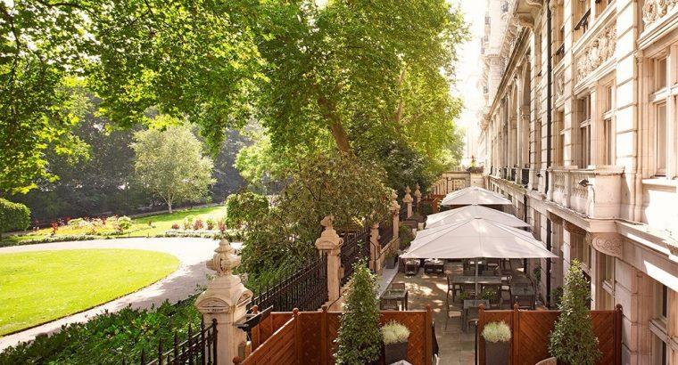 RHG Terrace & Whitehall Gardens