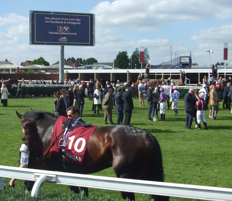 Racing at Newbury